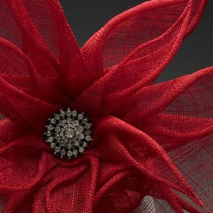 Red_Flower_Close_up